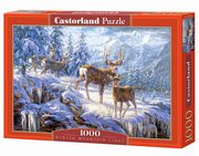 Puzzle Winter mountain light 1000,